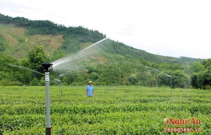Hệ thống tưới cây hẹn giờ thông minh tại Diễn Châu, Nghệ An giá rẻ, uy tín